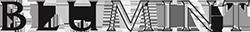 blumint logo
